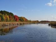Sieger im Fotowettbewerb 8/2012: DIe schönsten Herbstfotos