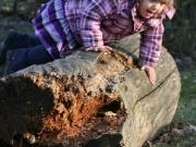 Land-und-Kind.de: Mädchen klettert auf Baumstamm
