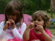 Land-und-Kind.de: Elfenfütterung
