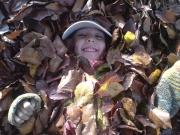 Herbstlaub - das macht eine Menge Spaß!