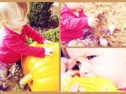 Herbstcollage - kleine Elfe mit Kürbis