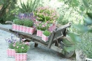 Fundstück der Woche: Bunte Blumenkörbe