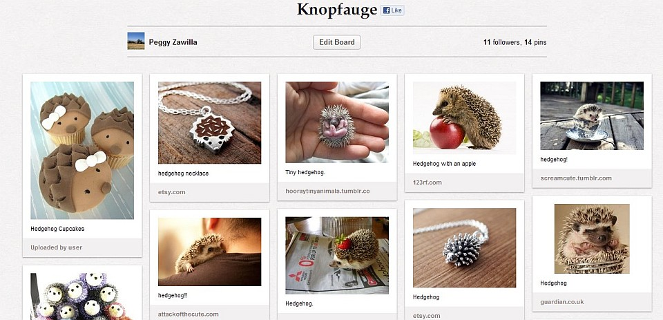 Meine Igel-Liste bei Pinterest - Ein kleiner Einblick für euch in die bunte Welt der Web-Pinwand