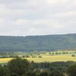 """Der Blick auf unser derzeit """"gelbes"""" Deister-Süntel-Tal"""