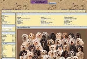 Blick in das Havi-Hunde-Forum - Startseite - http://www.havihundeforum.de/
