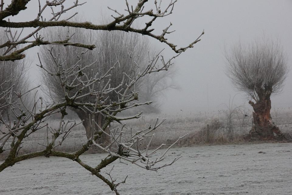Winterlandschaft - Niedersachsen mit Puderzucker überzogen