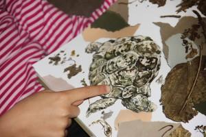 Blick ins Buch - Als das Nashorn fliegen lernte - Nadia Adina Rose